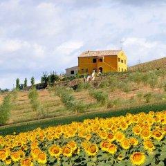 Отель Villa Scuderi Италия, Реканати - отзывы, цены и фото номеров - забронировать отель Villa Scuderi онлайн помещение для мероприятий