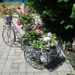 Гостиница Guest House Anastasiya в Анапе отзывы, цены и фото номеров - забронировать гостиницу Guest House Anastasiya онлайн Анапа