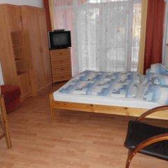 Отель Orel Residence Венгрия, Хевиз - отзывы, цены и фото номеров - забронировать отель Orel Residence онлайн комната для гостей фото 3