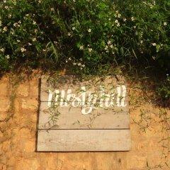 Отель Misty Hill Далат помещение для мероприятий фото 2