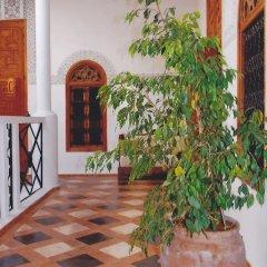 Отель Riad Dar Soufa Марокко, Рабат - отзывы, цены и фото номеров - забронировать отель Riad Dar Soufa онлайн фото 7