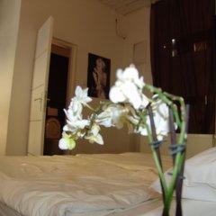 Hotel Maksimir удобства в номере фото 2