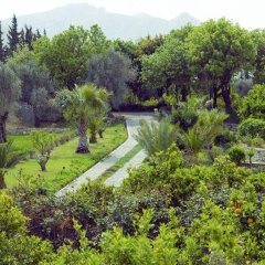 Отель Olive Farm Of Datca Guesthouse - Adults Only Датча
