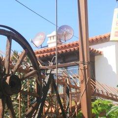 Anz Guest House Турция, Сельчук - отзывы, цены и фото номеров - забронировать отель Anz Guest House онлайн фото 12