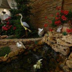 Гостиница Коралл Украина, Николаев - отзывы, цены и фото номеров - забронировать гостиницу Коралл онлайн фото 3