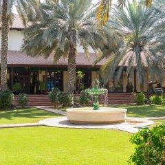 Отель Desert Palm ОАЭ, Дубай - отзывы, цены и фото номеров - забронировать отель Desert Palm онлайн фото 3