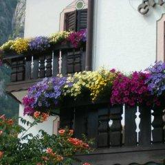 Hotel Stella Alpina Фай-делла-Паганелла фото 2