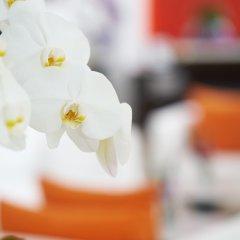 Отель Dusit Suites Hotel Ratchadamri, Bangkok Таиланд, Бангкок - 1 отзыв об отеле, цены и фото номеров - забронировать отель Dusit Suites Hotel Ratchadamri, Bangkok онлайн гостиничный бар
