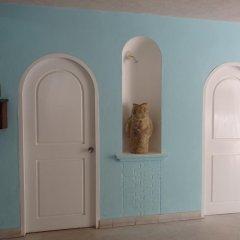 Emperador Hotel & Suites Пуэрто-Вальярта удобства в номере