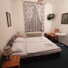 Отель Pension Brezina Prague Прага комната для гостей фото 5