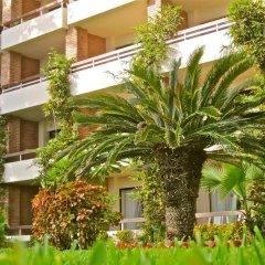 Отель The Palms Resort of Mazatlan фото 4
