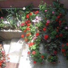 Отель Dili Villa Армения, Дилижан - отзывы, цены и фото номеров - забронировать отель Dili Villa онлайн балкон