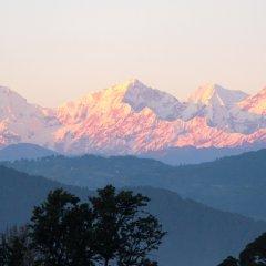 Отель Shaligram Hotel Непал, Лалитпур - отзывы, цены и фото номеров - забронировать отель Shaligram Hotel онлайн приотельная территория