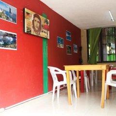 Отель Hostel Balagan Мексика, Канкун - отзывы, цены и фото номеров - забронировать отель Hostel Balagan онлайн детские мероприятия фото 4