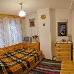 Отель Palyongov Guest House Болгария, Чепеларе - отзывы, цены и фото номеров - забронировать отель Palyongov Guest House онлайн комната для гостей