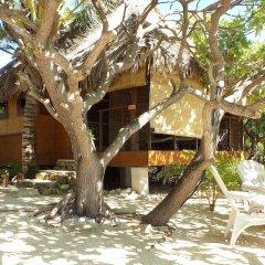 Отель Green Lodge Moorea Французская Полинезия, Папеэте - отзывы, цены и фото номеров - забронировать отель Green Lodge Moorea онлайн фото 7