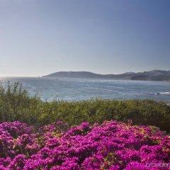 Отель Dolphin Bay Resort and Spa пляж фото 2