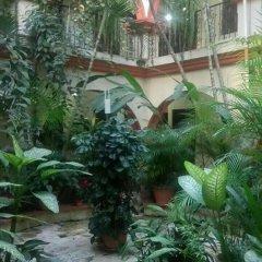 Hotel Acropolis Maya Копан-Руинас фото 10
