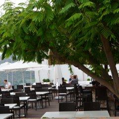 Kalamar Турция, Калкан - 4 отзыва об отеле, цены и фото номеров - забронировать отель Kalamar онлайн питание фото 3