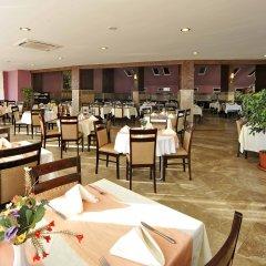 Lioness Hotel Турция, Аланья - отзывы, цены и фото номеров - забронировать отель Lioness Hotel онлайн помещение для мероприятий