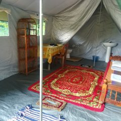 Отель Wild eco safari детские мероприятия фото 2