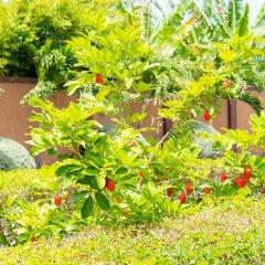 Отель Donway, A Jamaican Style Village Ямайка, Монтего-Бей - отзывы, цены и фото номеров - забронировать отель Donway, A Jamaican Style Village онлайн фото 3
