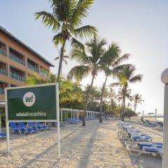 Отель Whala! boca chica Доминикана, Бока Чика - 1 отзыв об отеле, цены и фото номеров - забронировать отель Whala! boca chica онлайн фото 5