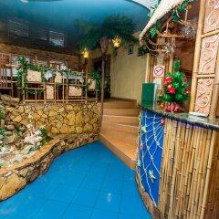 Мини-Отель Оазис бассейн