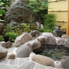 Отель Oyado Sakuratei Хидзи фото 22