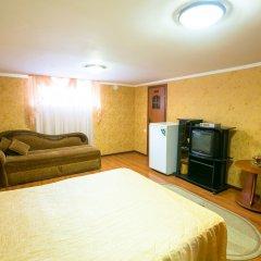 Гостиница Pansionat Bogema удобства в номере