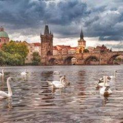 Отель Kaprova Чехия, Прага - отзывы, цены и фото номеров - забронировать отель Kaprova онлайн приотельная территория фото 2