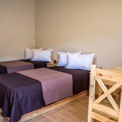 Отель EcoKayan Армения, Дилижан - отзывы, цены и фото номеров - забронировать отель EcoKayan онлайн комната для гостей фото 4