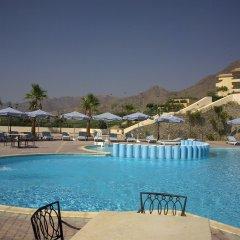 Отель La Playa Beach Resort Taba с домашними животными