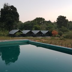 Отель Wild Panthera Yala бассейн