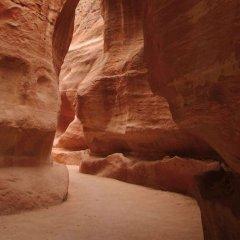 Отель Movenpick Resort Petra Иордания, Вади-Муса - 1 отзыв об отеле, цены и фото номеров - забронировать отель Movenpick Resort Petra онлайн бассейн фото 2