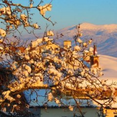 Отель Family Hotel Santo Bansko Болгария, Банско - отзывы, цены и фото номеров - забронировать отель Family Hotel Santo Bansko онлайн фото 5