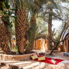 Отель Ecolodge - La Palmeraie Марокко, Уарзазат - отзывы, цены и фото номеров - забронировать отель Ecolodge - La Palmeraie онлайн фото 5