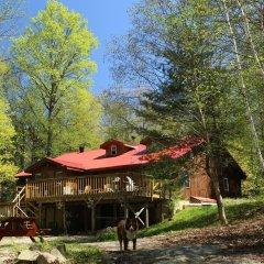 Отель Algonquin Eco-Lodge фото 4