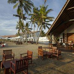 Отель The Surf Шри-Ланка, Бентота - 2 отзыва об отеле, цены и фото номеров - забронировать отель The Surf онлайн с домашними животными