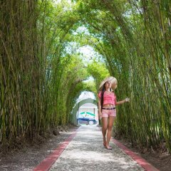 Отель Seagarden Beach Resort - All Inclusive фото 3