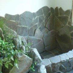 Nikko Suginamiki Youth Hostel Никко приотельная территория