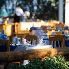 Belconti Resort Hotel - All Inclusive гостиничный бар
