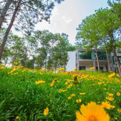 Terracotta Hotel & Resort Dalat фото 16