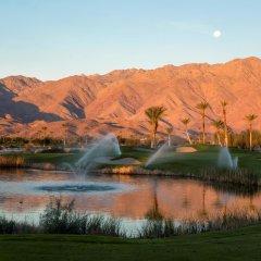 Отель Borrego Springs Resort and Spa фото 5