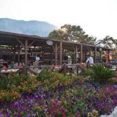 Отель Crystal Flora Beach Resort гостиничный бар