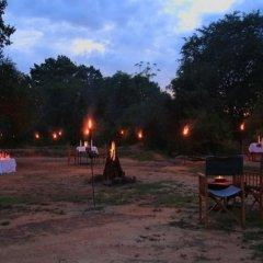 Отель Big Game Camp Yala Шри-Ланка, Катарагама - отзывы, цены и фото номеров - забронировать отель Big Game Camp Yala онлайн фото 4