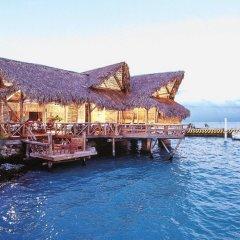 Отель Tortuga Bay Доминикана, Пунта Кана - отзывы, цены и фото номеров - забронировать отель Tortuga Bay онлайн приотельная территория