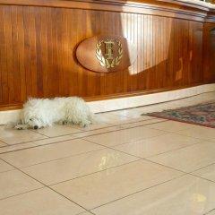 Hotel Imperial Beach Римини с домашними животными