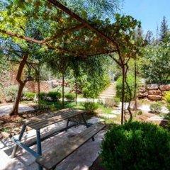 Отель Tur Sinai Organic Farm Resort Иерусалим фото 23