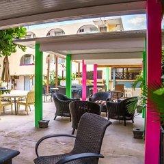 Отель Dos Mares Мексика, Кабо-Сан-Лукас - отзывы, цены и фото номеров - забронировать отель Dos Mares онлайн гостиничный бар